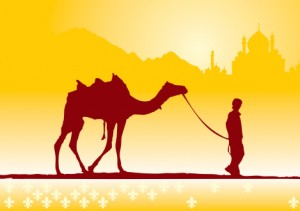 boy_and_camel